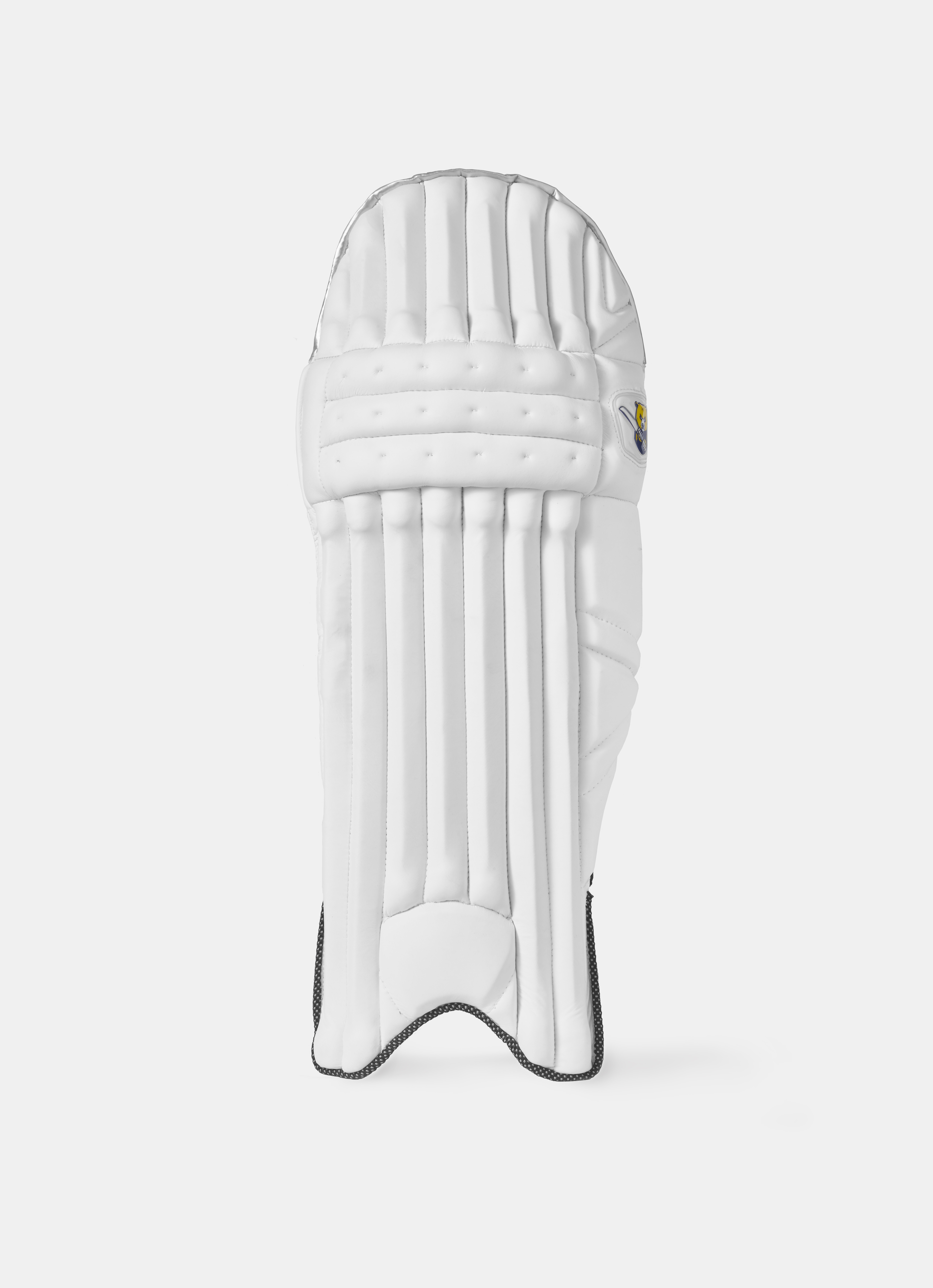 2019 Batting Pads
