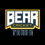 Bear Cricket Tours